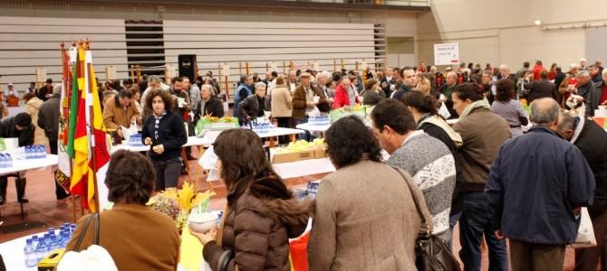 Festival do Caldo 2010